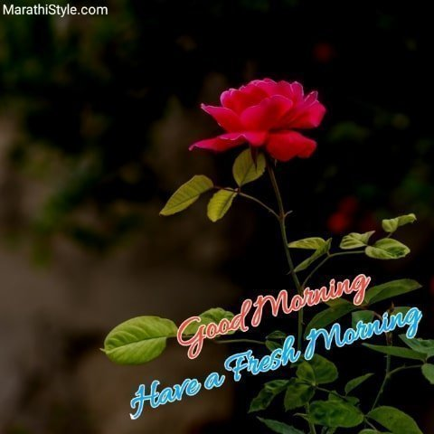 Gud morning pics