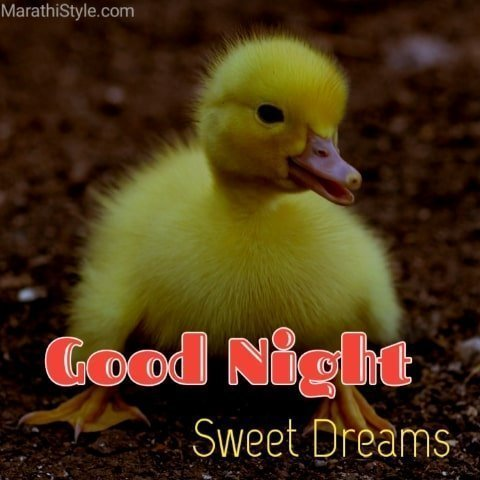 good night image