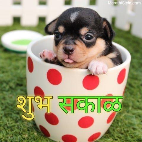 shubh sakal in marathi
